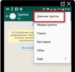 Данные группы в WhatsApp
